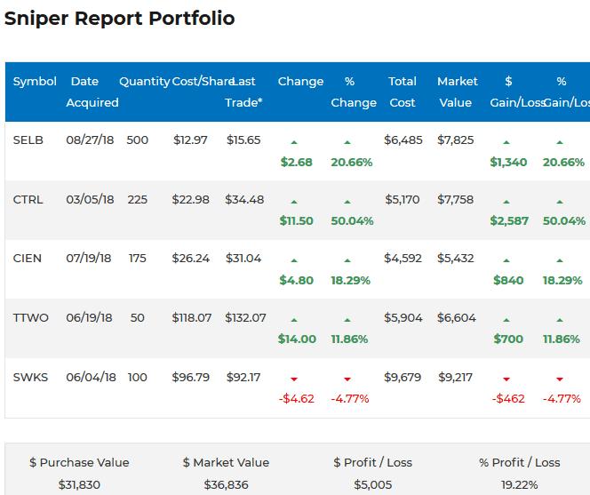 Sniper Report Portfolio