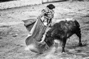 Raging Bull Penny Pro